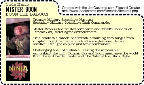 Mister Boon File Card
